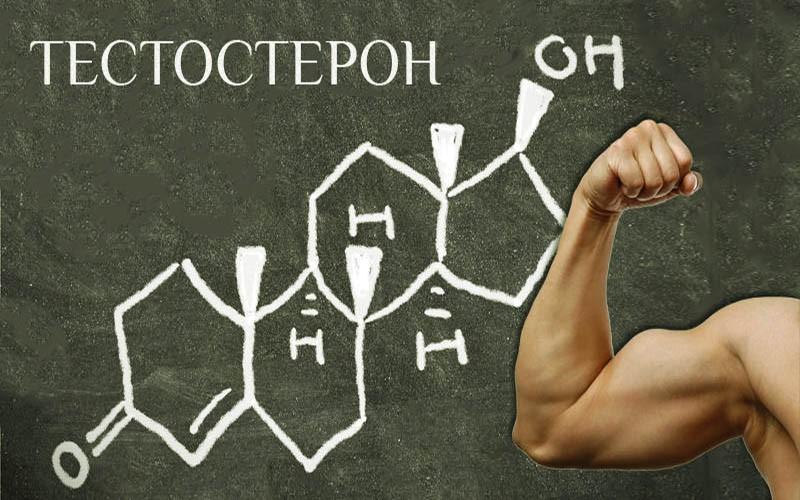 Как поднять низкий уровень тестостерона